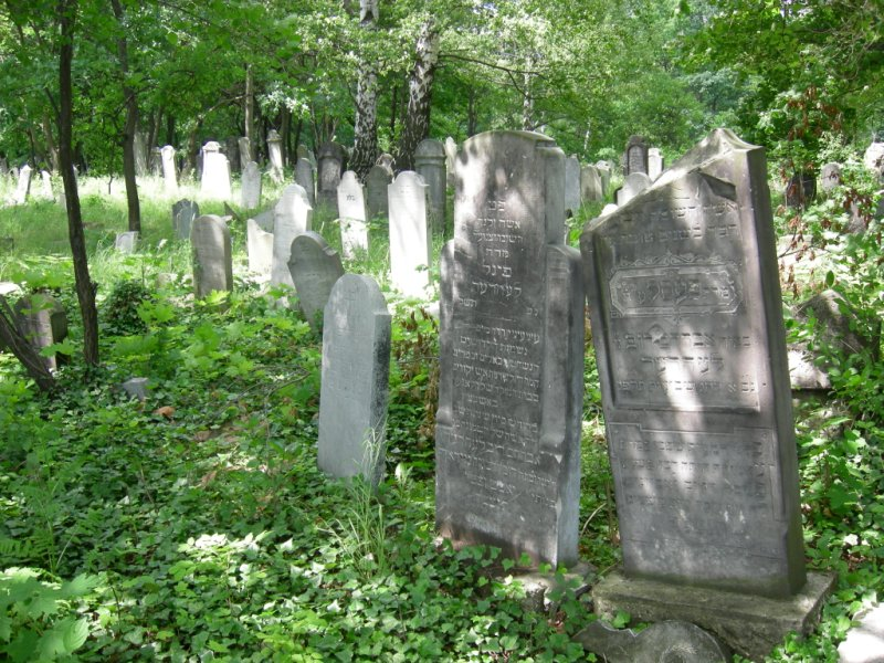 the-jewish-cemetery-of-chrzanow-5