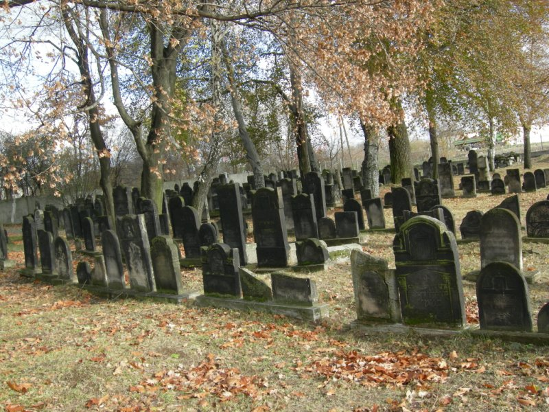 the-jewish-cemetery-of-czeladz-281