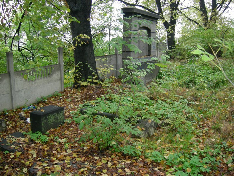 the-jewish-cemetery-of-swidnica-12