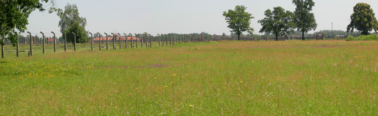 the-concentration-camp-of-birkenau